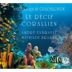 Le récif corallien