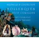 Mollusques du recif corallien (livre 2)